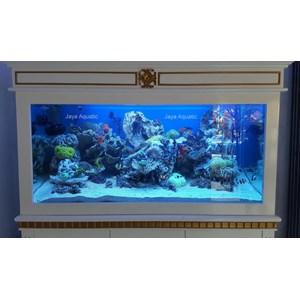 Dekorasi Aquarium Laut Kencana (  Aquarium dan Aksesoris )
