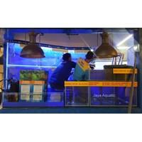 Distributor Aquarium Restaurant Daun Lada Surabaya (TP)  (  Aquarium dan Aksesoris ) 3