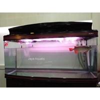 Jual Aquarium arowana Intelkam Polda Jatim ( Aquarium dan Aksesoris)