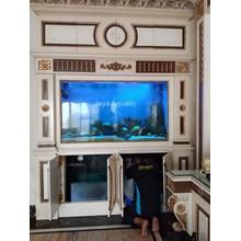 Aquarium Laut Pakuwon II Surabaya (Aquarium dan Aksesoris )
