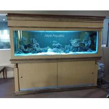 Aquarium Laut Pt SPILL Surabaya (Aquarium dan Aksesoris )