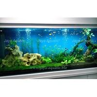 Jual Aquarium Aquascape - Akuarium & Aksesoris 2