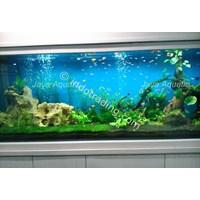 Aquarium Aquascape - Akuarium & Aksesoris Murah 5