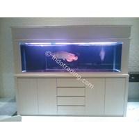 Sell Arowana Aquarium From Indonesia By Ud Jaya Aquatic Surabaya Cheap Price