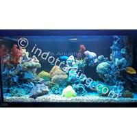 Beli Dekorasi Aquarium Air Laut  -  Akuarium & Aksesoris 4