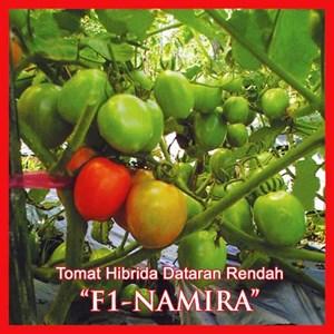 Benih Tomat F1-NAMIRA