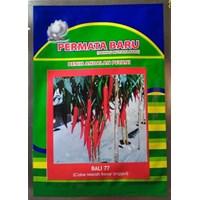 Jual Benih Cabe Merah Besar BALI-77 2