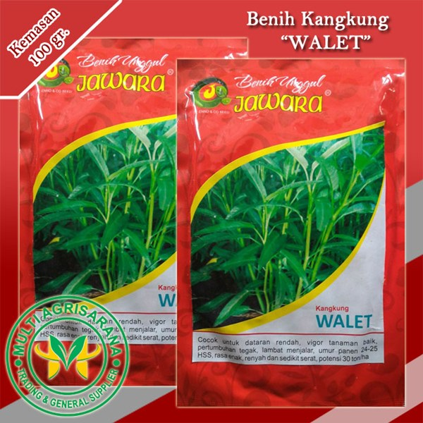 "Benih Kangkung ""WALET"" 100 gr."