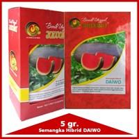 Jual Benih Semangka Hibrid DAIWO 5 gr.