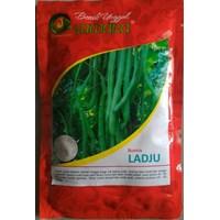 Distributor Benih buncis biji putih LADJU 100 gr. 3