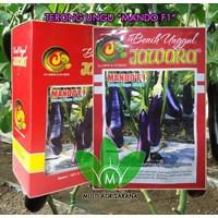 Jual Benih terong ungu MANDO F1 2