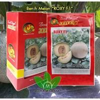 Jual Benih Melon F1 ROXY 5 gram
