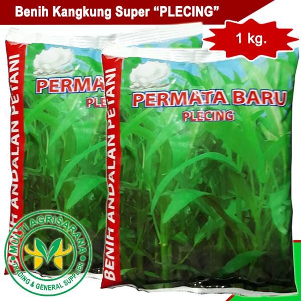 """Benih kangkung """"PLECING"""" 1 kg."""