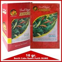 Jual Benih Cabe rawit putih  SIUNG 10 gr. 2