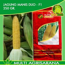 Benih Jagung Manis DUO F1 250 gr.