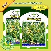 Benih Cabe Rawit Putih AZZAM 12