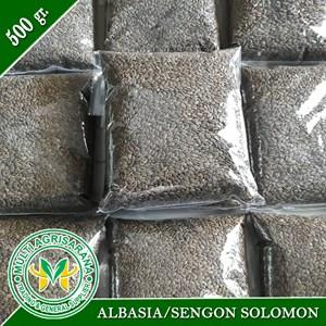 Bibit Bibit Benih Sengon Solomon 500 gram.