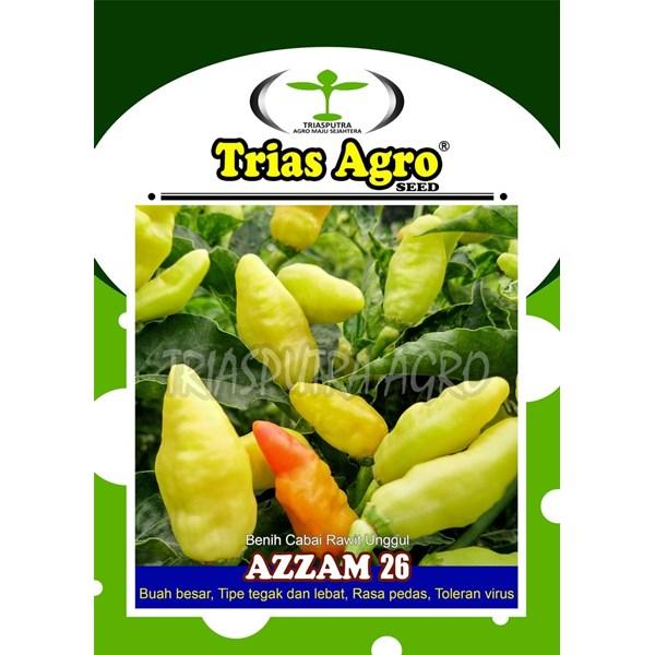 Benih bibit cabe rawit putih AZZAM 26  kemasan 10 gr.