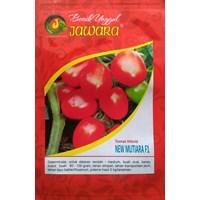 Jual Benih Tomat NEW MUTIARA F1 0.5 gr. 2