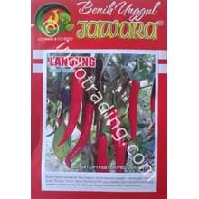 Big Red Chili Seed Varieties LANDUNG