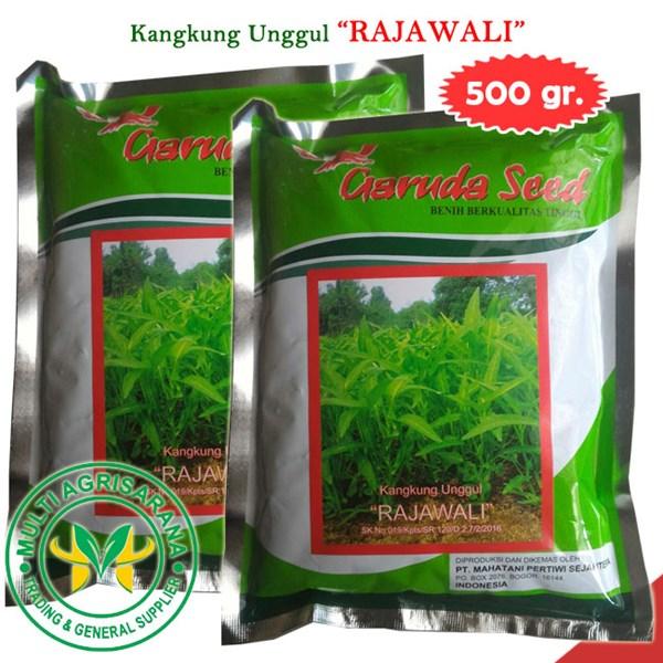 """Benih Kangkung """"RAJAWALI"""" 500 gr."""
