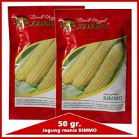 Jual Benih jagung manis BIMMO 50 gr.