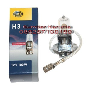 From Lampu Halogen Merk Hella H1 6