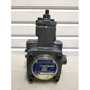 Variable Vane Pump HYDROME