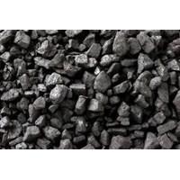 Batu Bara / Coal