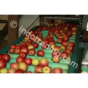 Food and Beverage Conveyor