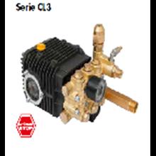 Motor Pompa Seri Cl3