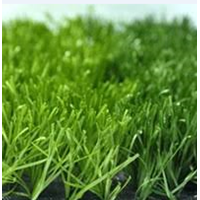American Diamond Futsal Grass