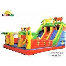 Slide3 Animal Paradise 6x12x6.5 (Sliding)