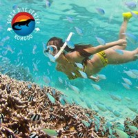DISCOVER FREE DIVING By Somerdive