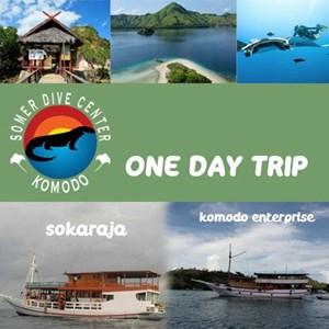 TRIP 1 HARI - KOMODO LABUAN BAJO By Somerdive