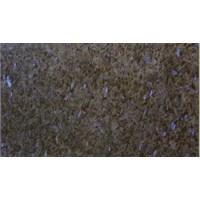 Granite Blue Pearl 1