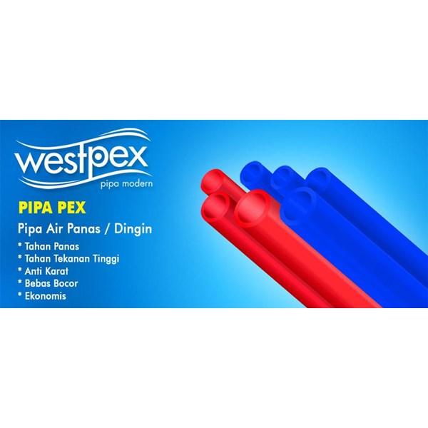 PEX Pipe