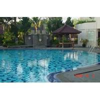 Swimming Pool Type 8