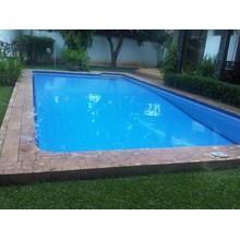 Swimming Pool Skimmer Type 2