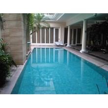 Swimming Pool Skimmer Type 7