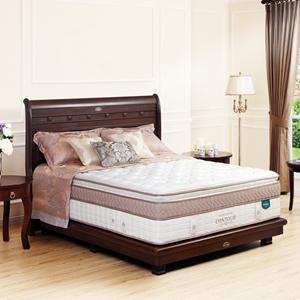 Spring Bed Countour