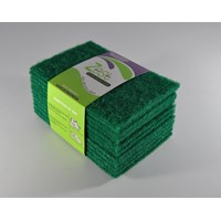 My Scouring Pad