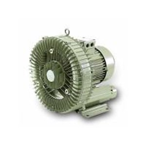 Ring Blower TS Type