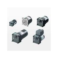 V Series Induction Reversible & Electromagnetic Brake (gear motor) 1