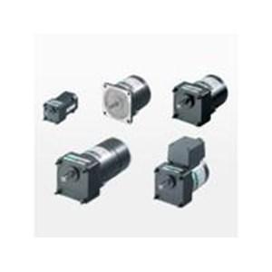 V Series Induction Reversible & Electromagnetic Brake (gear motor)