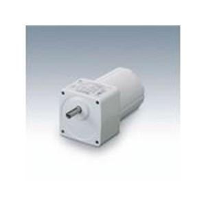 Dust-Resistant AC Induction Motors (gear motor)