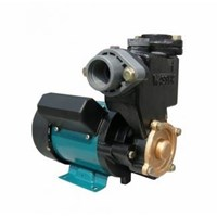 Pompa Sumur Dangkal Wasser Pw-131 E 1