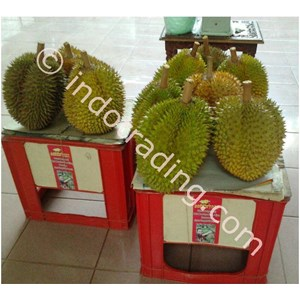 Agrolearning Durian By H. Udoyo S.