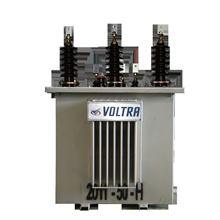 100kva Voltra Distribution Transformer