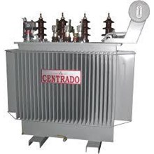 CENTRADO Type 2 Distribution Transformers